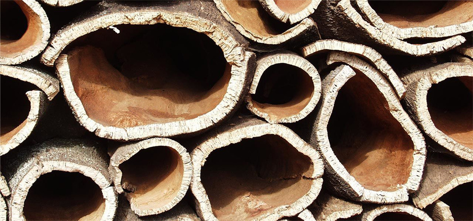 sustentabilidad birkenstock